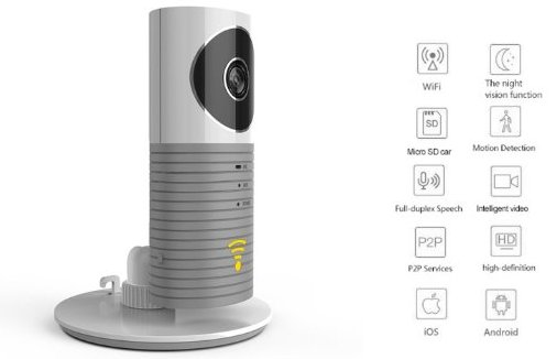 CleverDog budget home security camera
