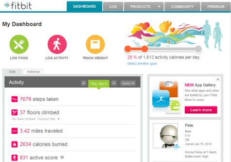 Fitbit Site Screenshot 02