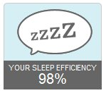 Fitbit Sleep Efficiency